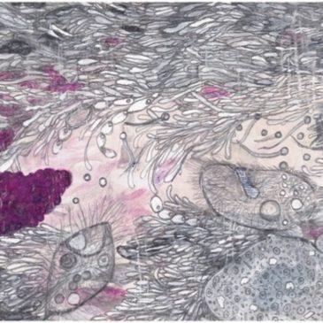 Boden lebt! Leben und Werk der Annie Francé-Harrar